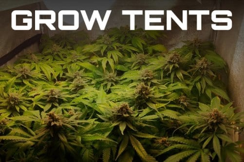 DIY Grow Tents A few weeks back I wrote up a Beginners Guide to growing your own weed. Within it I discussed some of the potential benefits of indoor ... & DIY Grow Tents - LED Indoor Grow Tents - How-To Guide | Leafbuyer