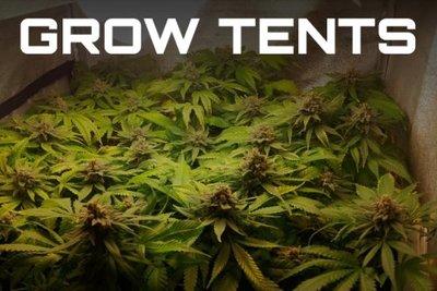 DIY Grow Tents & Growing Marijuana Archives - Page 6 of 8 - The Marijuana Blog ...