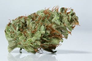 lemon og most popular strains in LA