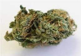 trainwreck, most popular strains in san francisco