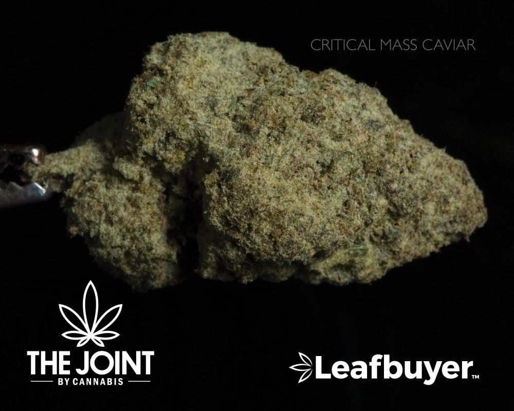 thejoint-critical_mass_caviar