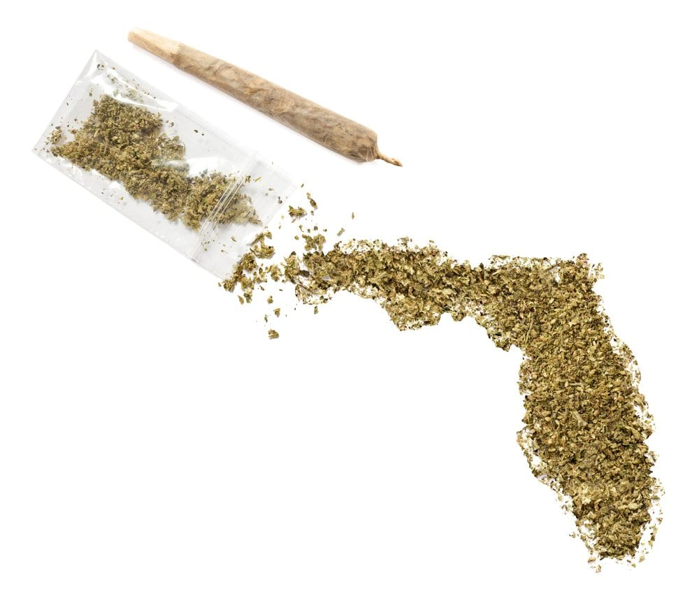 resistance to florida s medical marijuana amendment Florida gov pledges to sign medical marijuana bill passed during  intends to  sign the medical marijuana bill passed friday by the state legislature  to  receive either low-thc cannabis or full-strength medical marijuana.