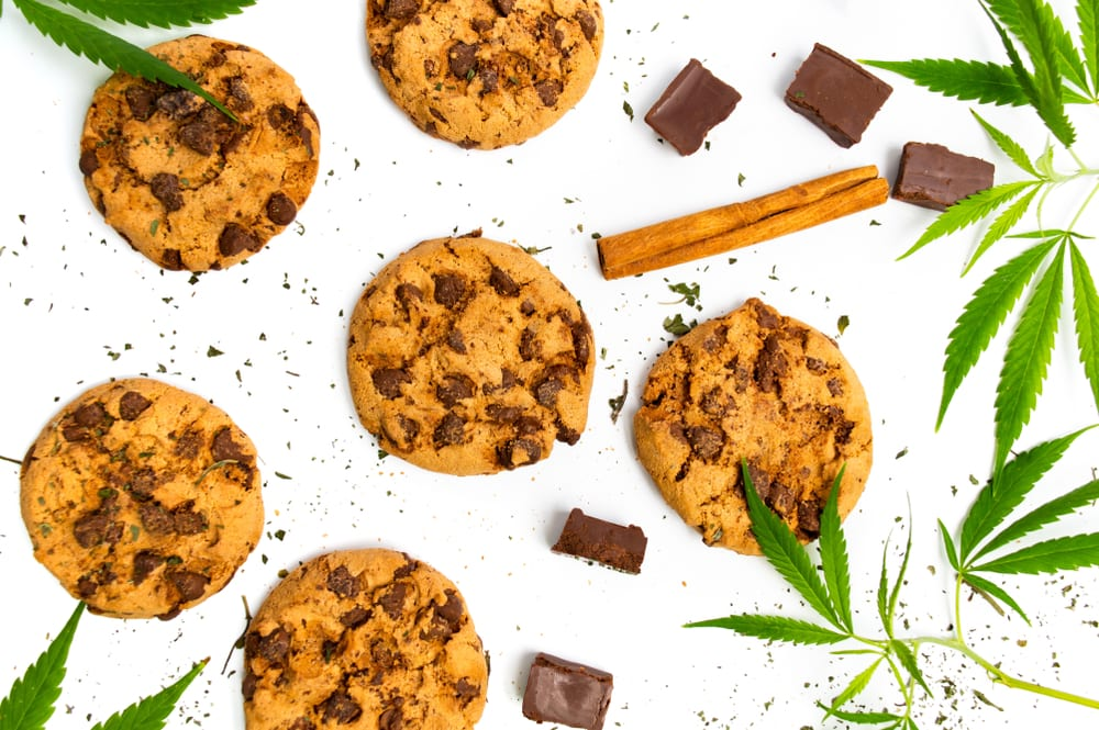 chocolate chip cannabis cookies showing how much weed do you need for edibles