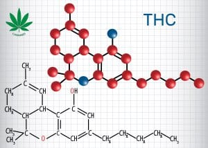 Synthetic Cannabis THC Molecular Structure