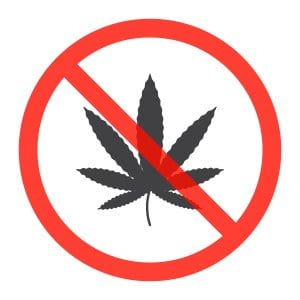 No Marijuana Federally Illegal
