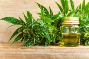 CBD Oil Medical Marijuana