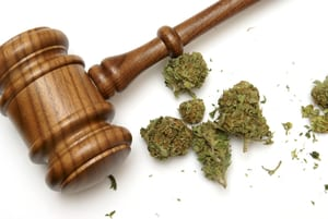 image of a gavel next to some weed nugs