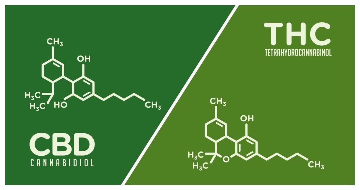diagrams showing the chemical compounds of THC vs CBD and how they're different