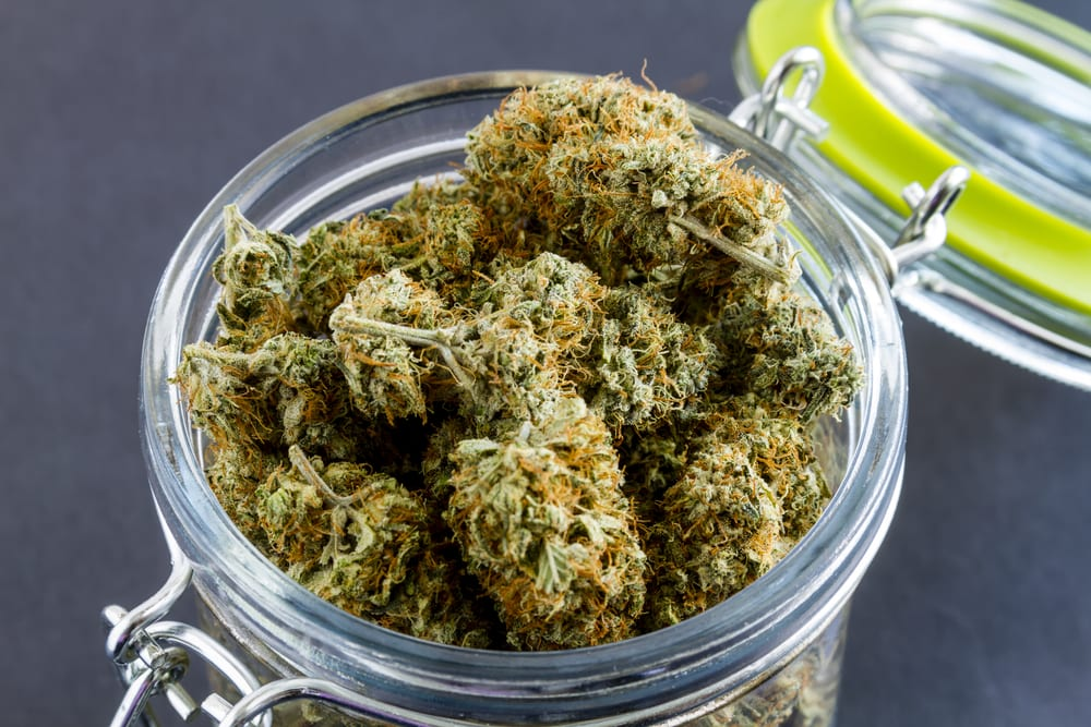 jar of cannabis flower as a weed gift for stoners