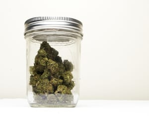 image of a glass mason jar with marijuana buds inside. showing the best way to store marijuana flower is in an air-tight glass jar