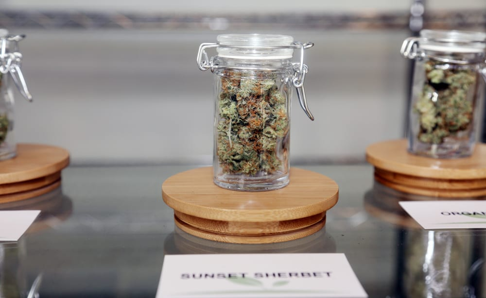 jar of marijuana on display , which is what you should buy if your weed gave you moldy weed symptoms