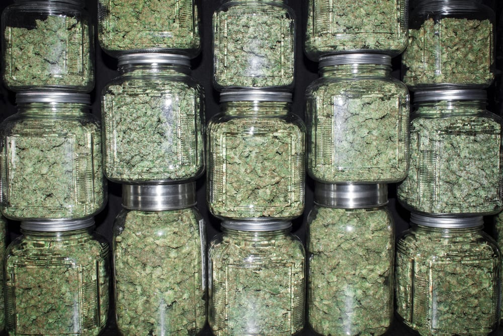 jars of marijuana stacked on top of each other