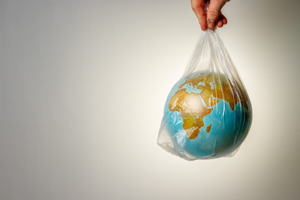 the world in a plastic bag