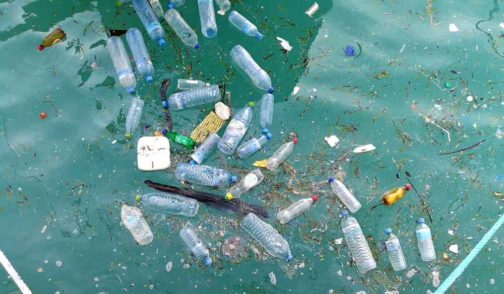 Plastic bottles float in the ocean