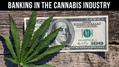 Banking in the cannabis industry