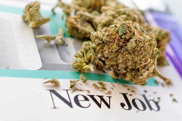 marijuana job post