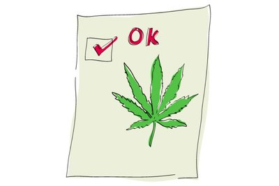 Marijuana Voting Check Mark