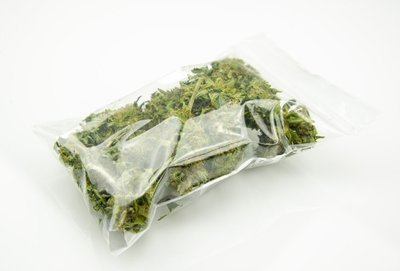 Bag of Marijuana Evidence
