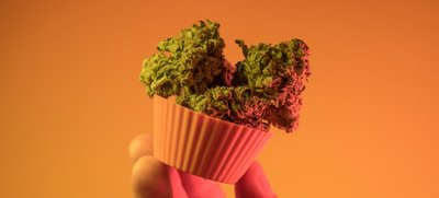 cannabis-buds-cupcake-By content diller