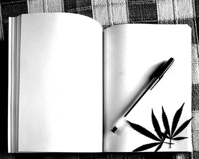 Open book with marijuana leaves - will The Cannabist survive?