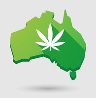 South Australia vies for cannabis War on Drugs