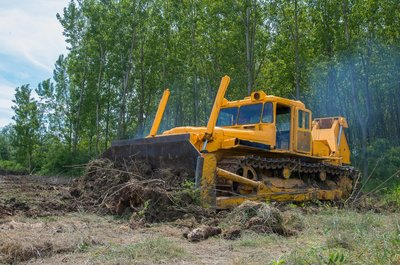 bulldozer cuts down a forest