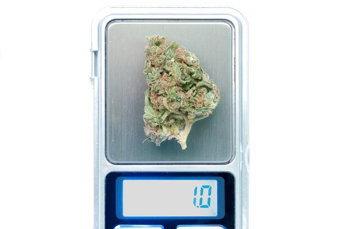 weed nug on scale