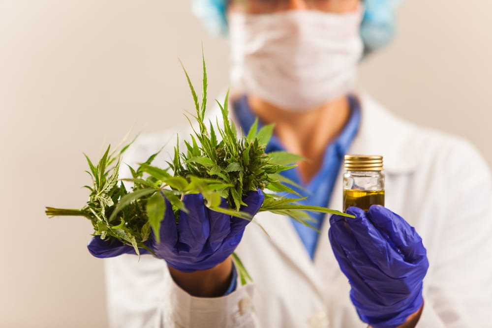 doctor holding leaves and cannabis oil