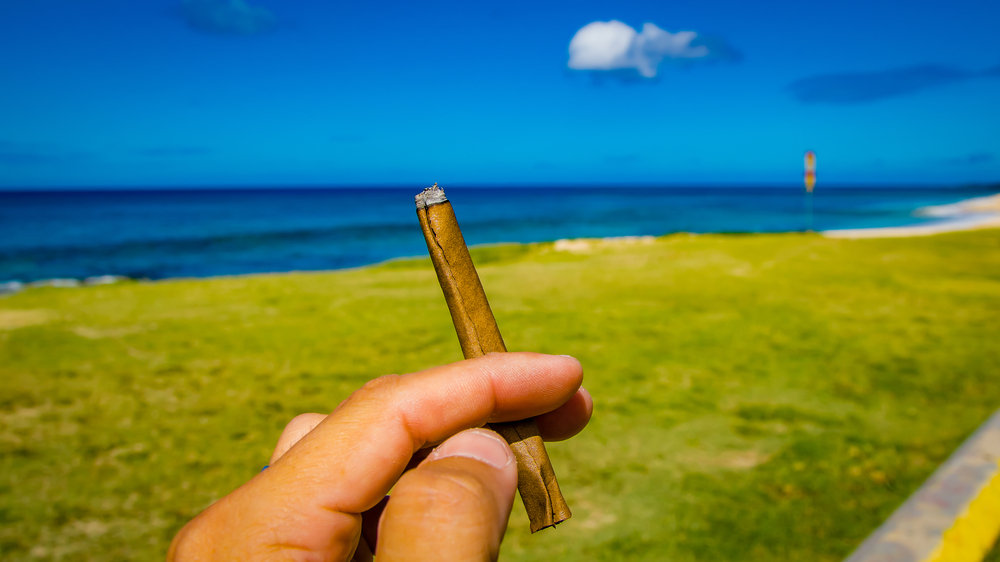 holding a blunt by the ocean
