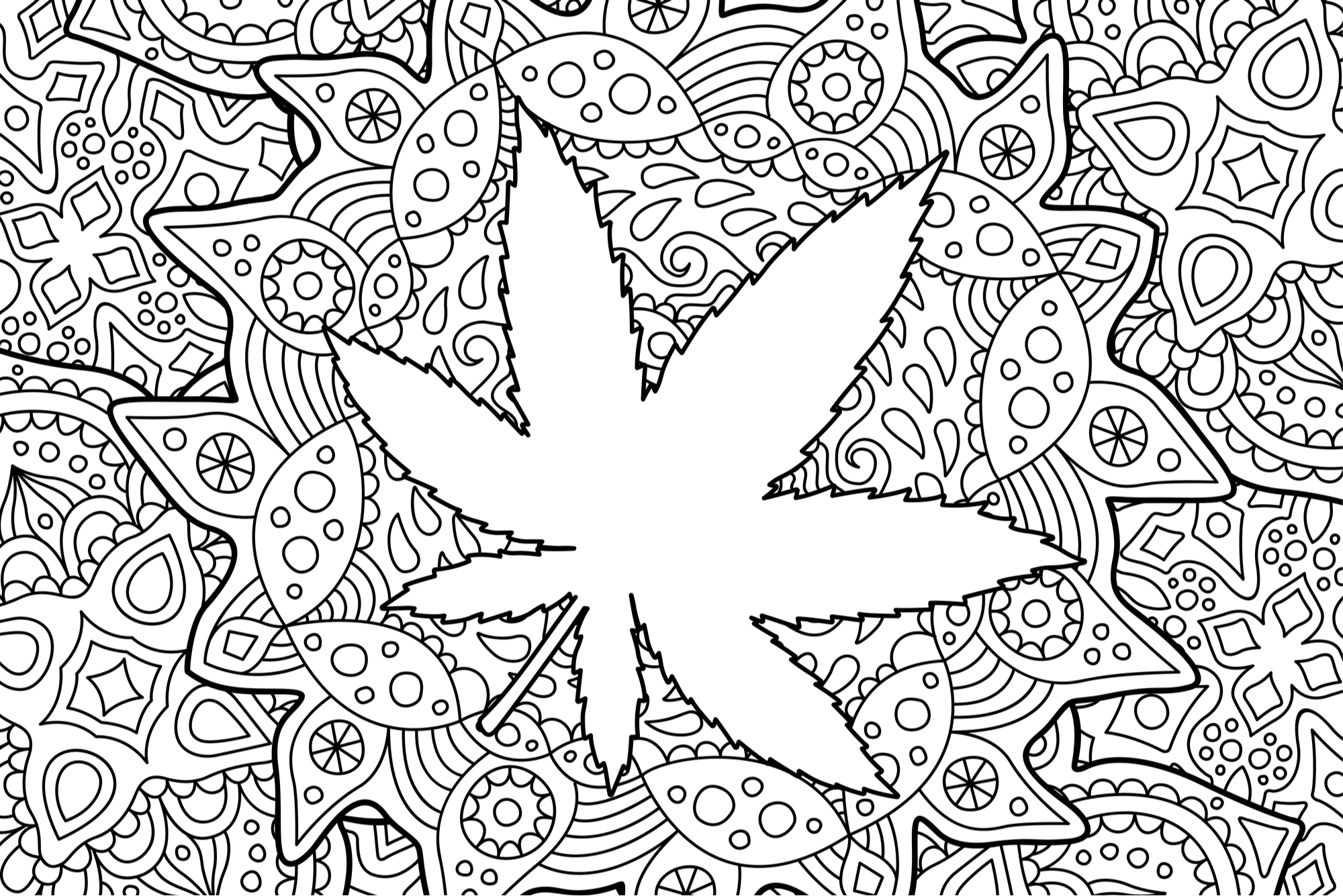 - Top 5 Cannabis Coloring Books For The Artistic Stoner Leafbuyer
