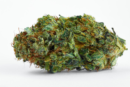Dutch Treat image