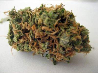 Grape Kush image