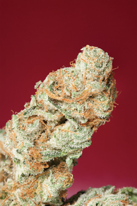 Strawberry Kush image