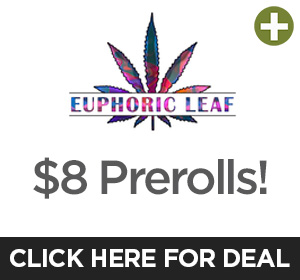 Euphoric Leaf  Top Deal