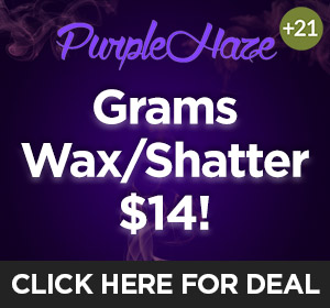 Purple Haze - $21 Wax/Shatter Top Deal