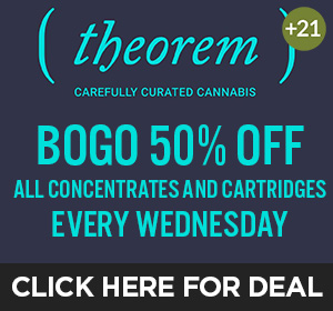 Theorem -Wednesday Top Deal