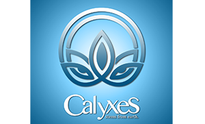Calyxes Dispensary