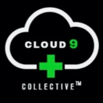 Cloud 9 - Arcadia logo