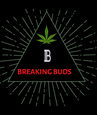 Breaking Buds Delivery logo