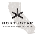 Northstar Holistic Collective logo