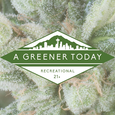A Greener Today - Shoreline logo