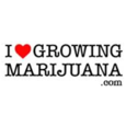 ilovegrowingmarijuana.com - Accessories logo