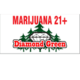 Diamond Green  logo