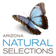 AZ Natural Selections of Mesa logo