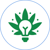 Green Light Discount Pharmacy Top Dispensary