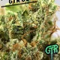 GTR - Green Tree Remedy photo