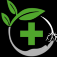 Today's Herbal Choice logo