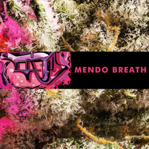 Mendo Breath image
