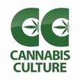 Cannabis Culture - Davie St logo